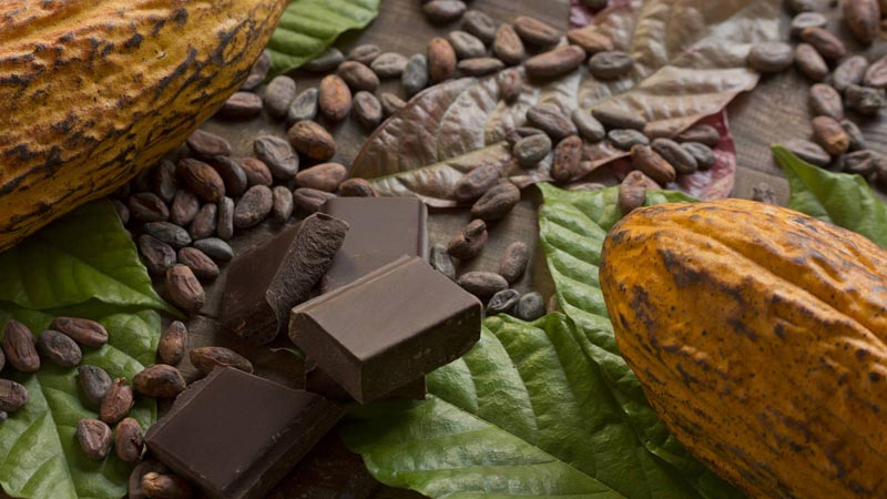 chocolate, cacao, salud